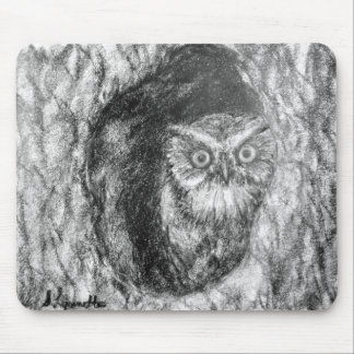 Screech Owls Owl Charcoal Black & White Drawing Mousepads