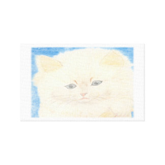 Screen of cat fofinho canvas print