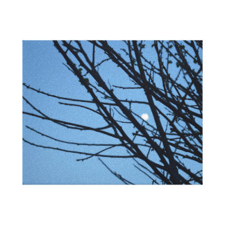 Screen with silhouette of tree and moon canvas print