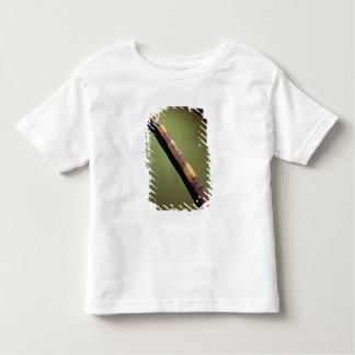 Scribe's case for writing reeds toddler T-Shirt