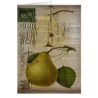 scripts decorative vintage botanical art pear card