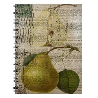 scripts decorative vintage botanical art pear spiral note book