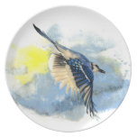Scrub BlueJay Plate