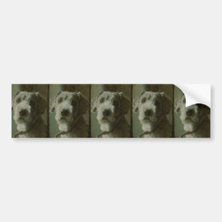 Scruffy Dog Antique Photo Bumper Sticker