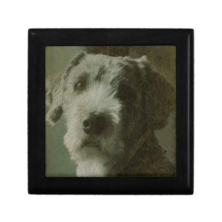 Scruffy Dog Antique Photo Keepsake Boxes