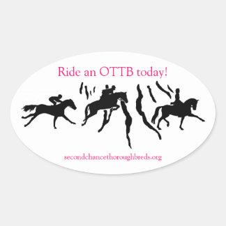 SCT Logo Sticker