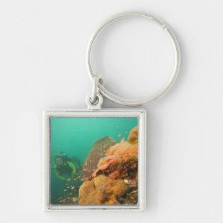 scuba diver & Scorpionfish Scorpanopsis Keychain