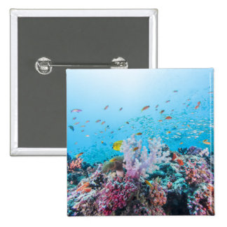 Scuba Diving With Colorful Reef And Coral 15 Cm Square Badge