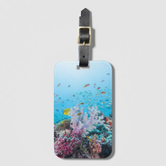 Scuba Diving With Colorful Reef And Coral Luggage Tag