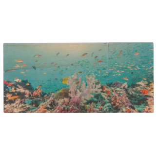 Scuba Diving With Colorful Reef And Coral Wood USB Flash Drive