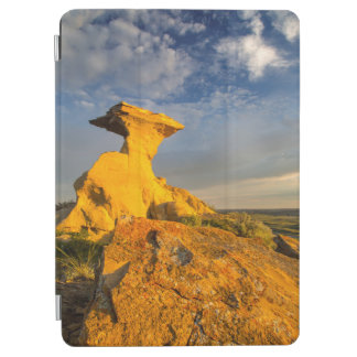 Sculpted Badlands Formation In Short Grass iPad Air Cover