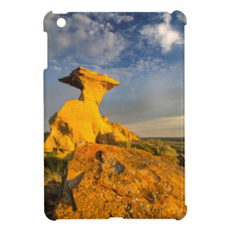 Sculpted Badlands Formation In Short Grass iPad Mini Covers