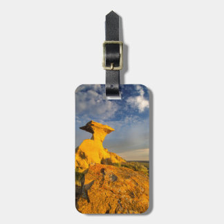 Sculpted Badlands Formation In Short Grass Luggage Tag