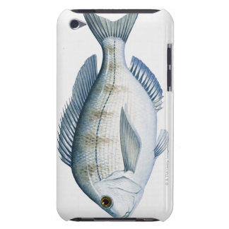 Scup Fish Case-Mate iPod Touch Case