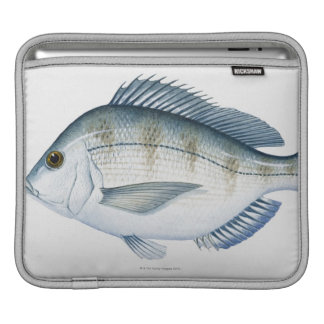 Scup Fish iPad Sleeve