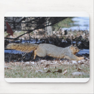 Scurrying Squirrel Mousepad