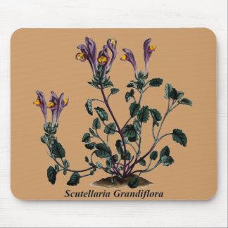 Scutellaria Grandiflora Mouse Mat