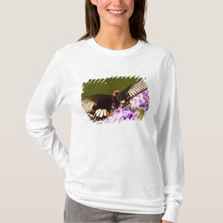 SE Asia, Thailand, Doi Inthanon, Papilio polytes 2 T-Shirt