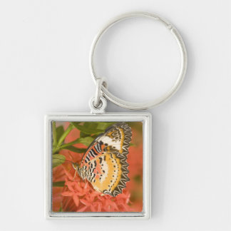SE Asia, Thailand, Nam Nao National Park, The Silver-Colored Square Key Ring