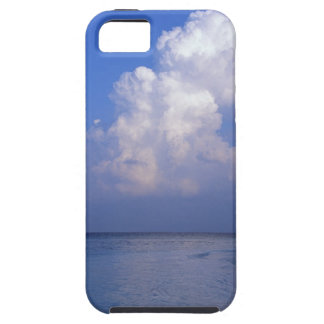 Sea 2 iPhone 5 cases