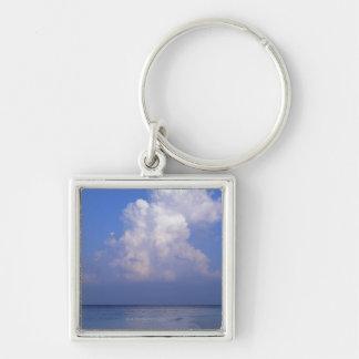 Sea 2 key ring