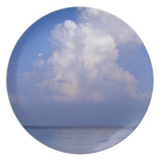 Sea 2 plate