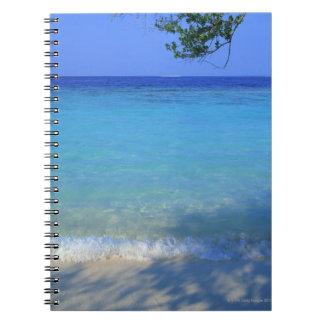 Sea 3 notebook