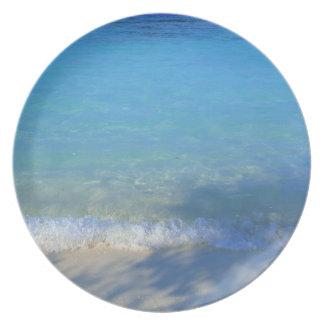 Sea 3 plate