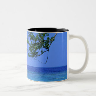 Sea 3 Two-Tone coffee mug