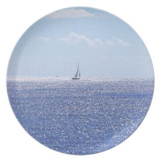 Sea 6 plate