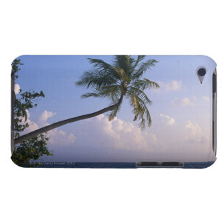 Sea and Palm Tree Barely There iPod Cover