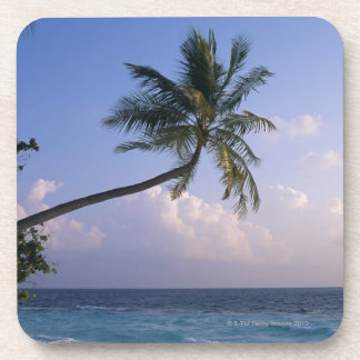 Sea and Palm Tree Coaster