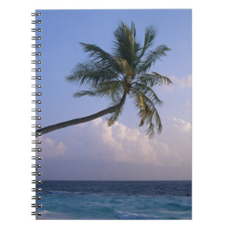 Sea and Palm Tree Notebooks