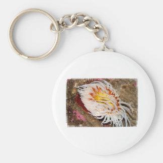 Sea anemone basic round button key ring