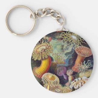 Sea Anemones Basic Round Button Key Ring