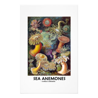 Sea Anemones Stationery Paper