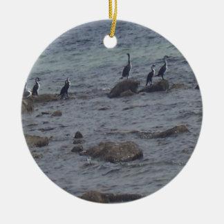 Sea Birds Round Ceramic Decoration