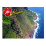 Sea Cliffs in Molokai, Hawaii Post Card