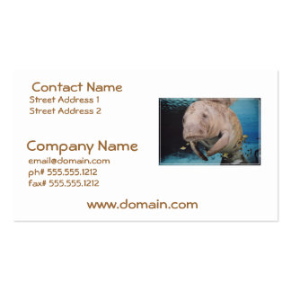 Sea Cow Swimming Business Cards