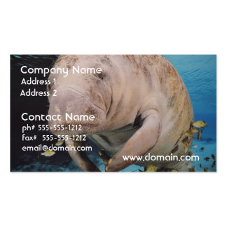 Sea Cow Swimming Business Card