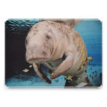 Sea Cow Swimming Personalised Announcement