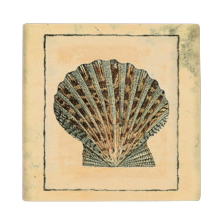 Sea Creatures by the Shore Wood Coaster