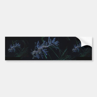 Sea Dragon Bumper Sticker