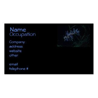Sea Dragon Business Card Template