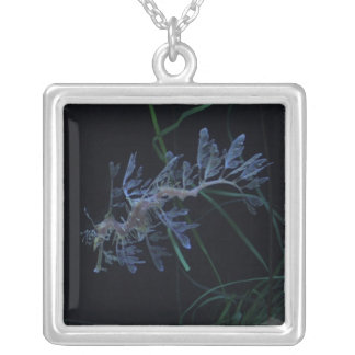 Sea Dragon Silver Plated Necklace