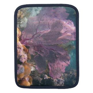 Sea Fan iPad Sleeve