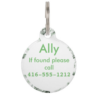 Sea Foam Green & White Botanical Floral Toile Pet Nametags