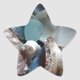 Sea Glass Shell Collected Star Sticker