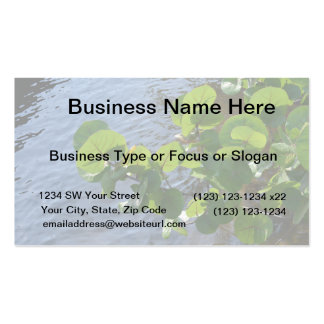 sea grape leaves over river plant florida nature pack of standard business cards