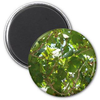 Sea Grapes 6 Cm Round Magnet